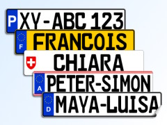 Licence Plate Sticker